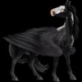 Pegasus Selle Français Chestnut