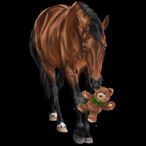 Riding Horse Camargue Dapple Gray
