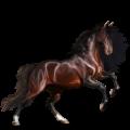 Верховая лошадь Орловский рысак Гнедая