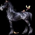 Cheval de selle Quarter Horse Palomino