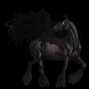 Tažný pegas Drum Horse Vraník Tovero