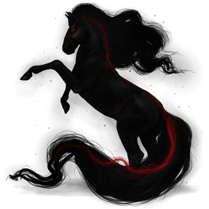 Riding Horse Appaloosa Black Leopard