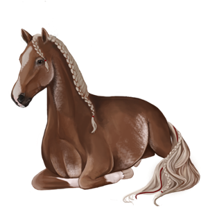 Riding Horse Thoroughbred Strawberry roan