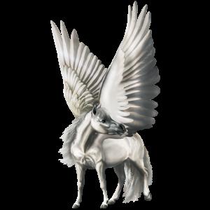 Pegasus pony Belgian Riding Pony Dapple Gray