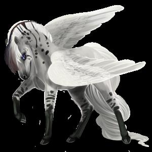 Pegasus pony Quarter Pony Bay
