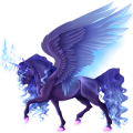 Winged riding unicorn Dark bay Tobiano