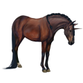 Rijpaard-eenhoorn Kastanje