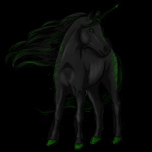 Unicorn pony Dartmoor Black