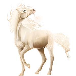Riding Horse Barb Light Gray