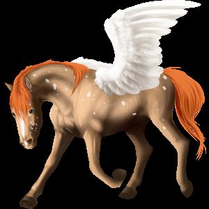 Pegasus-Pony Quarter Pony Dunkelfuchs