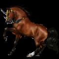 Riding unicorn Camargue Dapple Gray