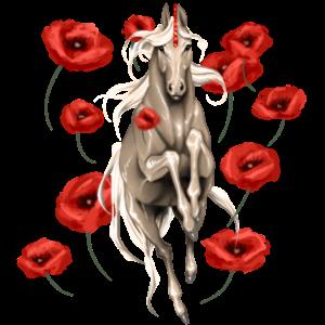 Jednorożec wierzchowy Holenderski koń gorącokrwisty Siwa Jabłkowita