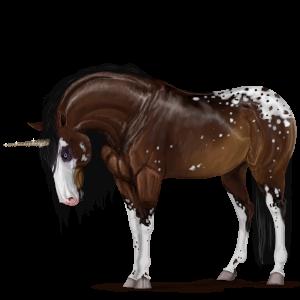 Pony-eenhoorn Connemara Gestippeld grijs