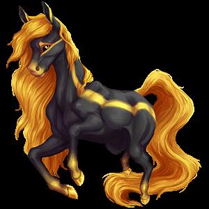 Riding Horse Arabian Horse Black