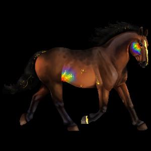 Jezdecký pegas Irský tinker Plavák