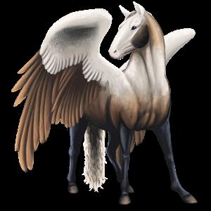 Pegasus pony Quarter Pony Roan