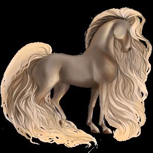 حصان ركوب حصان عربي  كستنائي