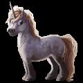 Unicorn pony Belgian Riding Pony Cherry bay