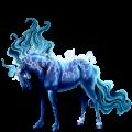 Pony Australian Pony Cherry bay