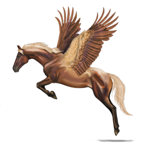 Riding pegasus Quarter Horse Cherry bay