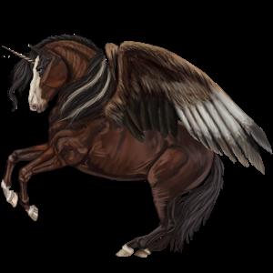 Winged riding unicorn Appaloosa Black