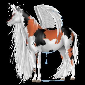 Winged unicorn pony  Shetland Dapple Gray