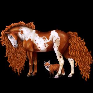 Pony Highland Pony Bay