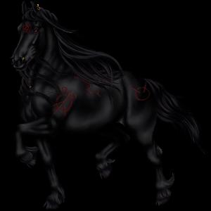 Jezdecký kůň Knabstrup Black Leopard