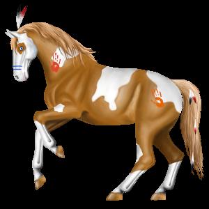 Riding Horse Paint Horse Cherry bay Tobiano