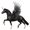 Winged riding unicorn Peruvian Paso Black