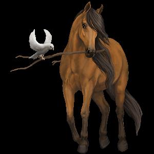 Riding Horse Quarter Horse Light Gray
