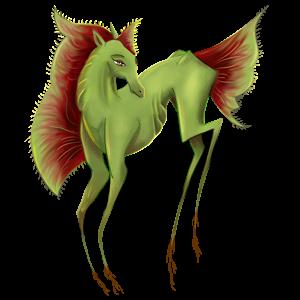 Pony Shetland Baio