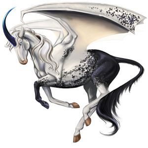 Winged riding unicorn Appaloosa Black Snowflake