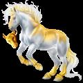 Cheval de trait Percheron Gris Pommelé