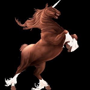 Draft unicorn Drum Horse Black Tobiano