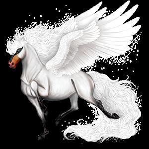 Pegaz wierzchowy Koń holsztyński Ciemnogniada