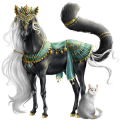Riding Horse Appaloosa Black Blanket