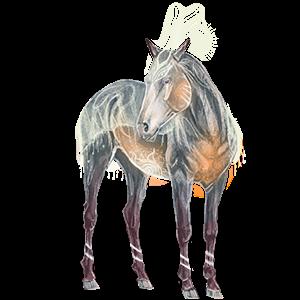 Riding unicorn Morgan Bay
