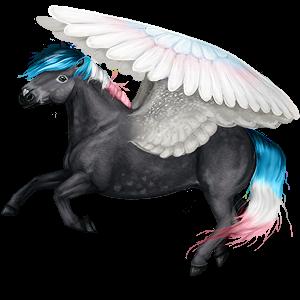 Pegasus pony Fjord Rodblakk