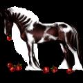 Cavalo de passeio Tennessee Walker Lazão