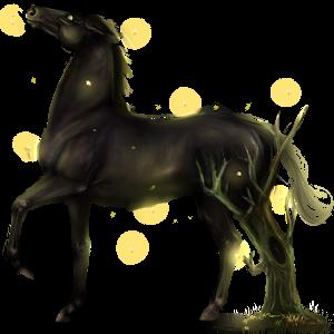 Jazdecký kôň Fínsky gaštanový