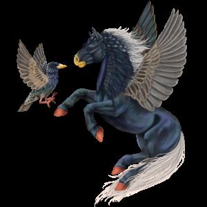 Pegasus pony Fjord Brunblakk