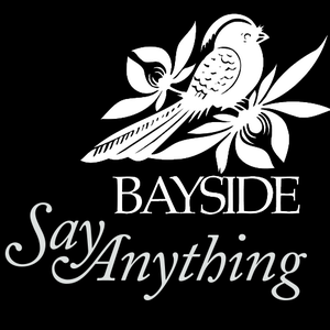 Design a Tour Poster for Bayside + Say Anything