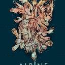 Alpine_copy