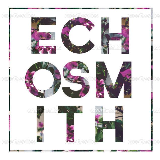 Echosmithshirt2