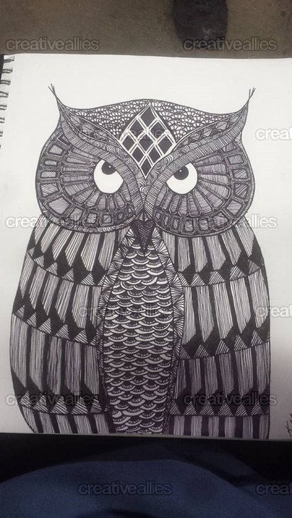 Owl2014abc