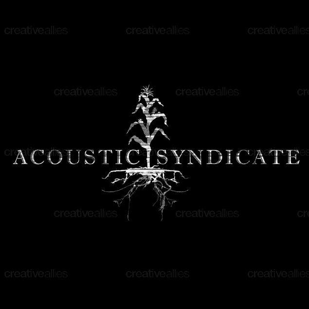 Acousticsyndicatenolayer