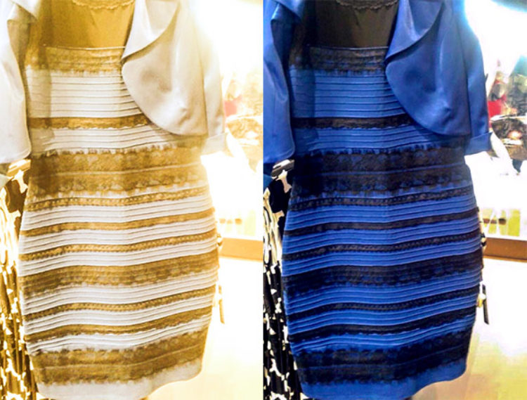 Lessons from the Dress: the Fundamental Ambiguity of Visual Perception