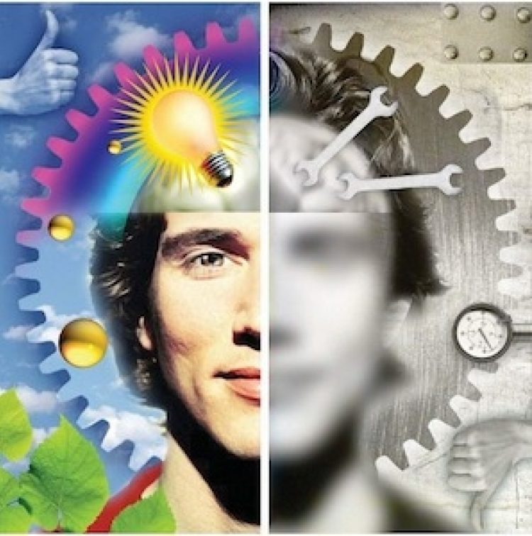 (Almost) Everything You Ever Wanted to Know About Creativity