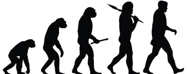 Humans: Why They Triumphed